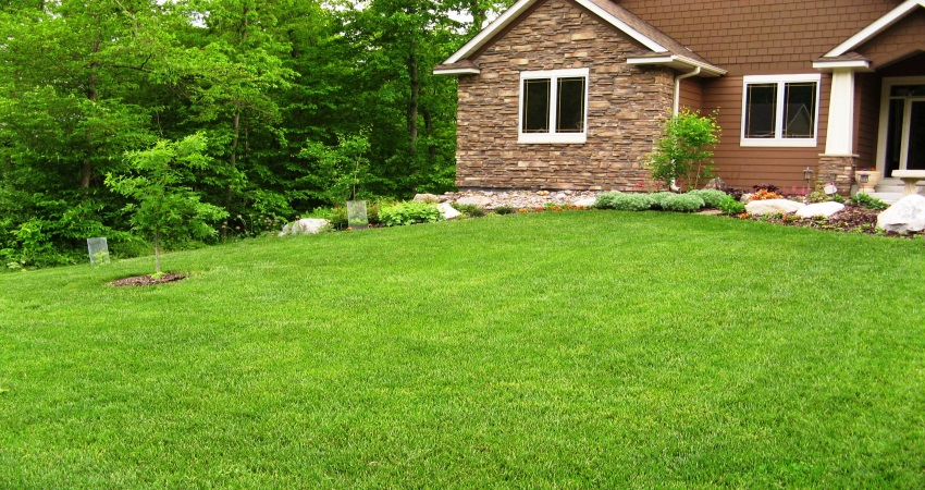 Fertilization and Weed Control By - Greener Than Ever Lawn Care